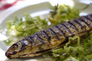 烤欧洲白鱼/Coregone alla griglia
