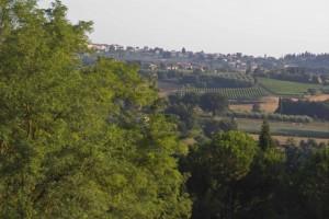 卢奇尼亚诺郊外的风景