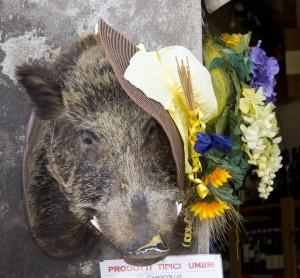 商店外的野猪头,表明他们有意大利腊肠出售