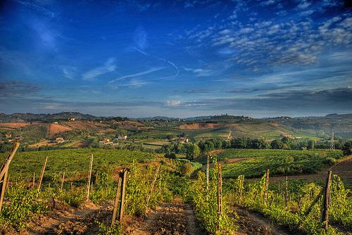 Toscana 的Chianti乡村,Francesco Sgroi拍摄