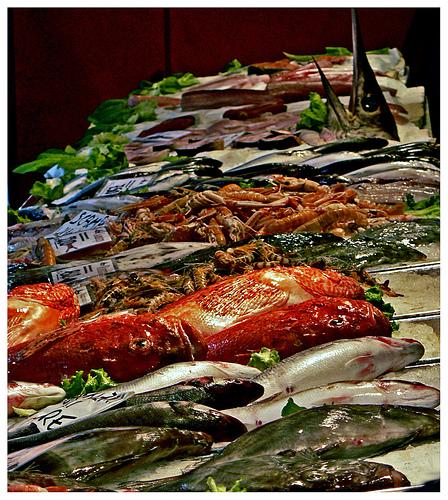 威尼斯Rialto市场的鱼,Eugenio拍摄
