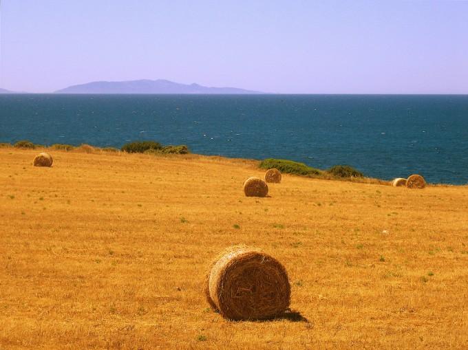撒丁岛乡村风景,LinoGambella拍摄