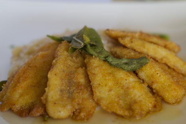 RISOTTO CON I FILETTI DI PESCE PERSICO(意大利调味饭配裹面包煎鲈鱼片,配鼠尾草黄油酱)