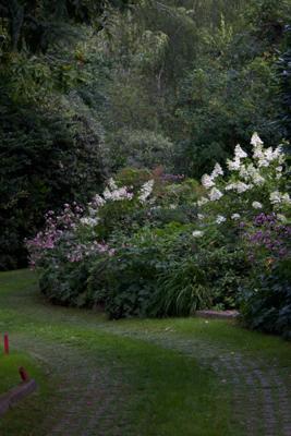 L'Albereta Relais & Chateaux里的花园