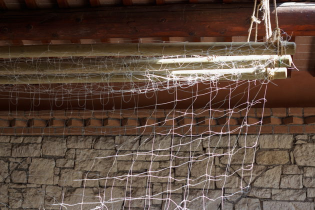 悬挂葡萄的网