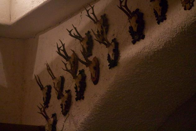 装有大木桶房间墙上的鹿角装饰