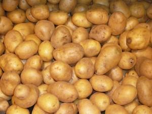 土豆,Christer Brandsvig拍摄