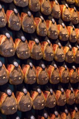meimanrensheng.com emilia-0825