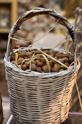 meimanrensheng.com salone di gusto-0847