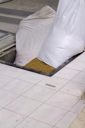 往为石磨提供粮食的谷物舱里倒入小麦