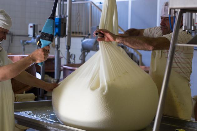 在奶酪布上面加一根棍子,用来扭转奶酪布把液体挤出