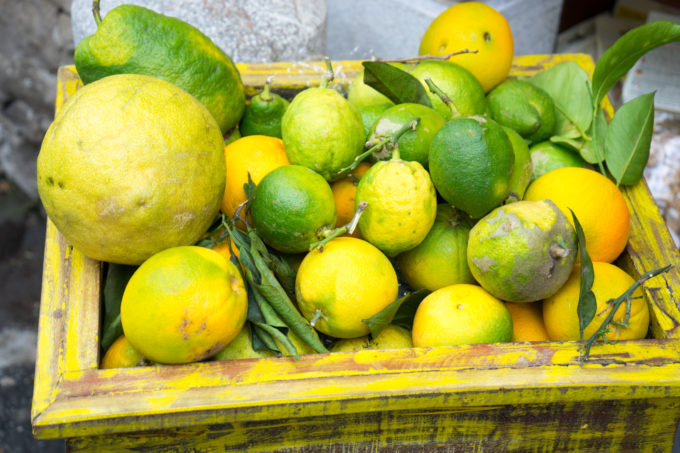 西西里柑橘的甜香